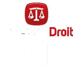 logo Cape Sup Droit Datadocké